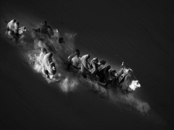 """Shenghua Yang """"Galloping in the desert"""" (China)"""