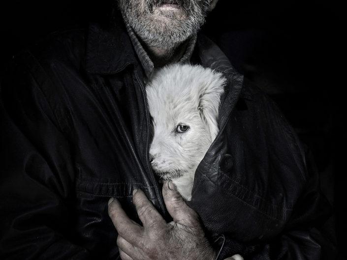 """István Kerekes """"The ill dog"""" - CEF HM"""